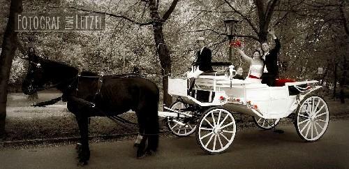 Hochzeitsfotograf Schloss Machern
