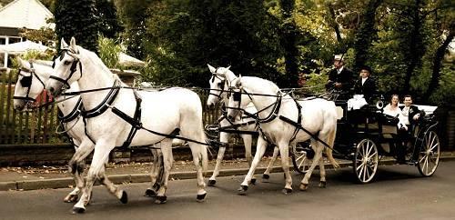 Hochzeitskutsche Grosspösna